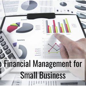 Manajemen Keuangan Bisnis UMKM