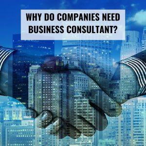Konsultan Bisnis Perusahaan